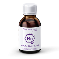 Manganum Lab 200 ml