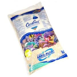 Aragonita CaribSea Reef Sand 20lbs (FC 1 AÑO)