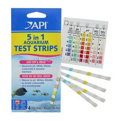 5 en 1 Test Strips (Test Express) API x 25