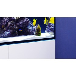 Red Sea Reefer 170 negro
