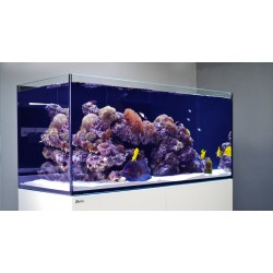 Red Sea Reefer 350 negro